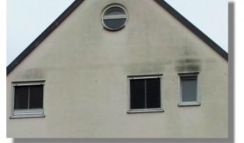 Haus mit Schimmel